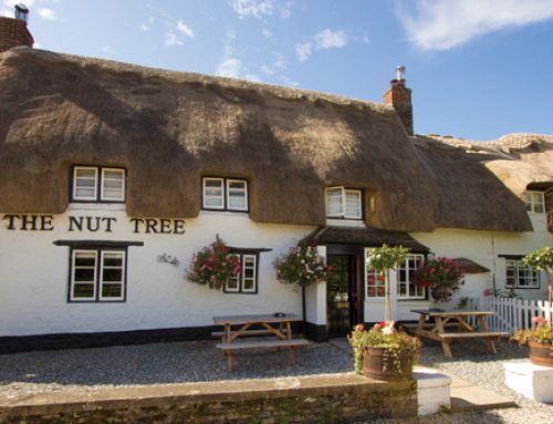 The Nut Tree not the nut house!